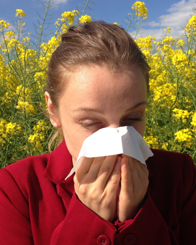 Probiotics may help with seasonal allergies